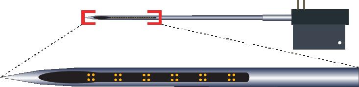 Tetrode 24 Channel Electrode